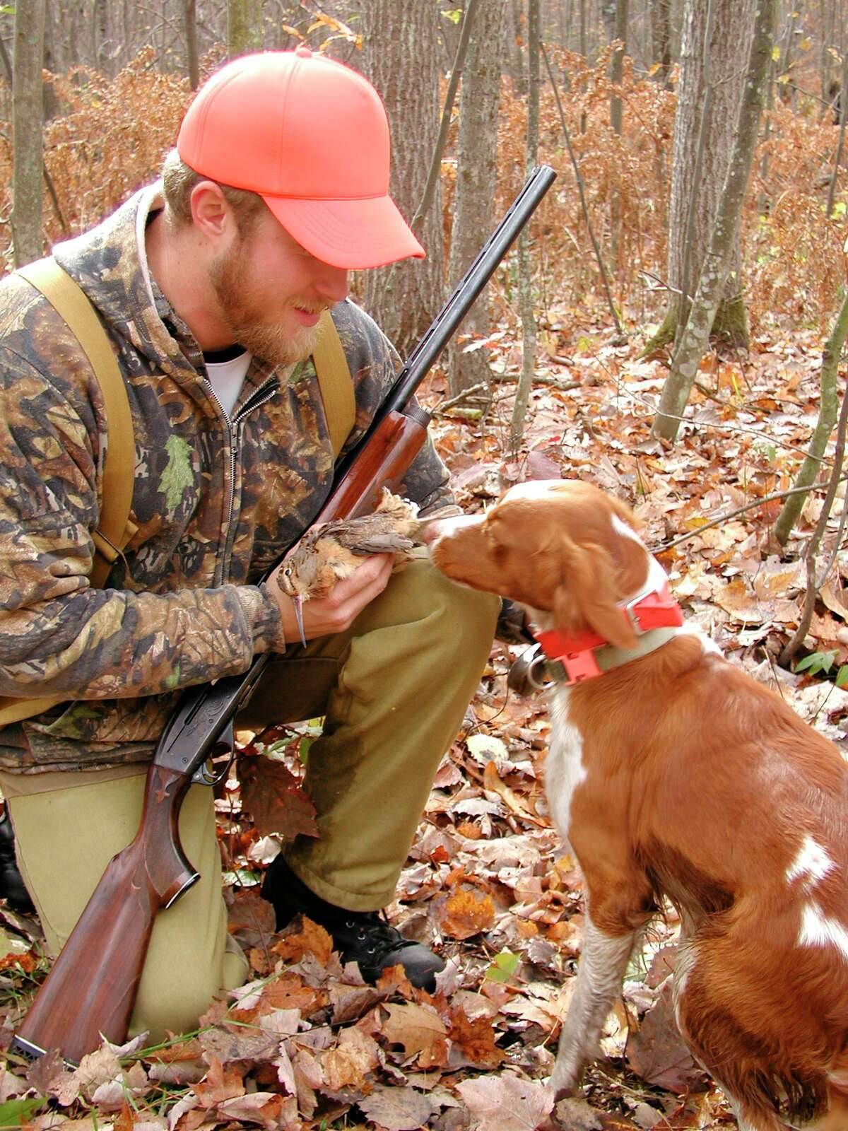 A hunter and his dog share a moment together after bagging aMichigan woodcock. (Steve Griffin/for the Daily News)