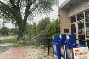 Severe thunderstorms that rolled through West Michigan on Tuesday afternoon brought down trees and power lines in communities along U.S. 10.Miguel Troche,of New Horizons Animal Rescue, sent the Pioneer photos of the damage in Reed City. (Courtesy photo/Miguel Troche)