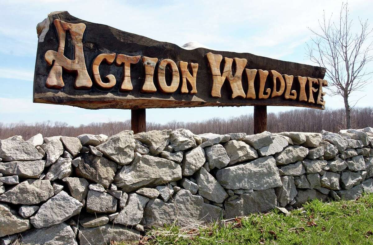 The Torrington Historical Society will hold a car show fundraiser Sept. 19 at Action Wildlife, Route 4 in Goshen, rain or shine.