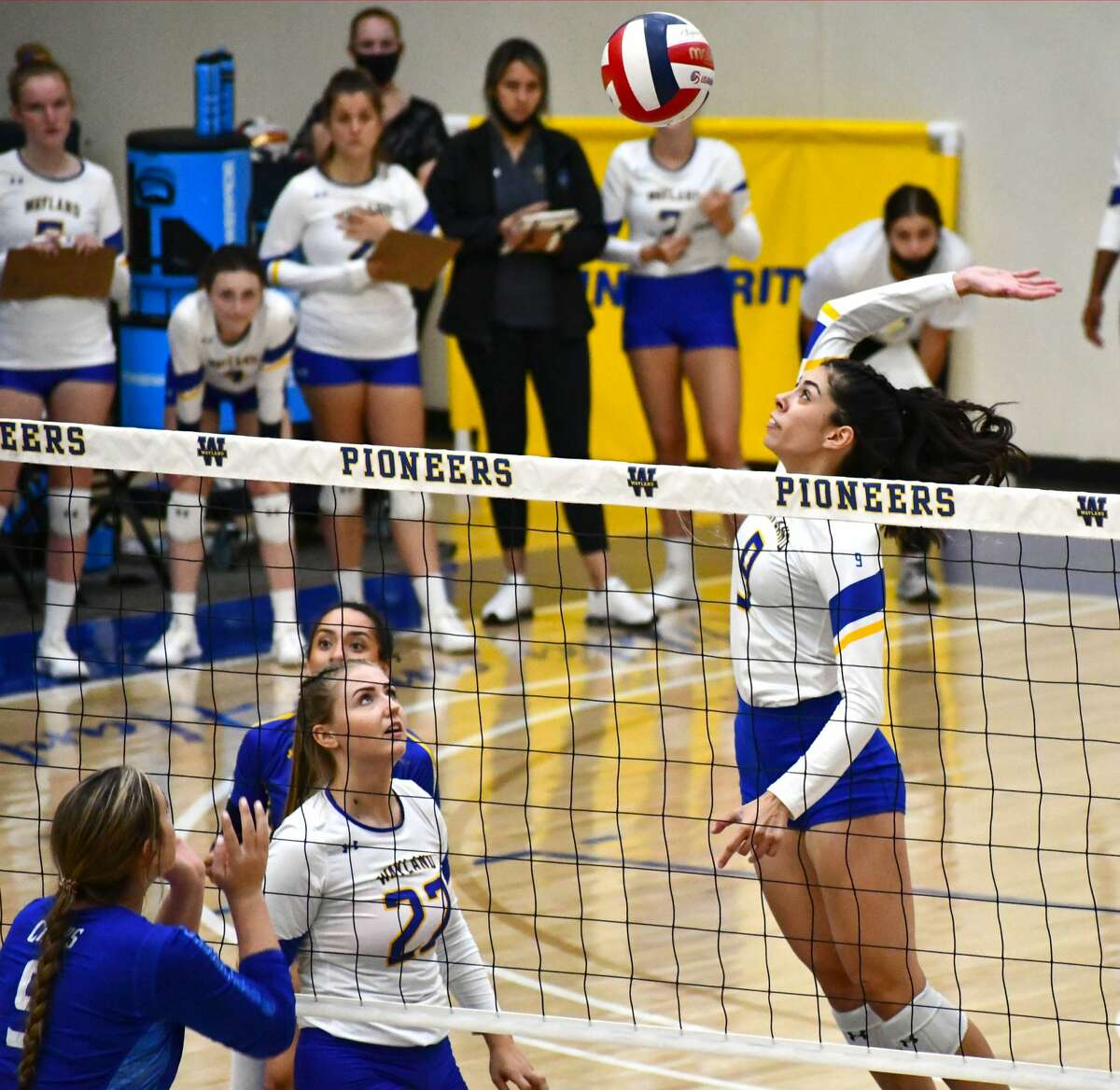 Plainview native Alexa Hinojos rises for the hit during Wayland Baptist's non-conference volleyball game against Lubbock Christian on Tuesday in the Hutcherson Center.