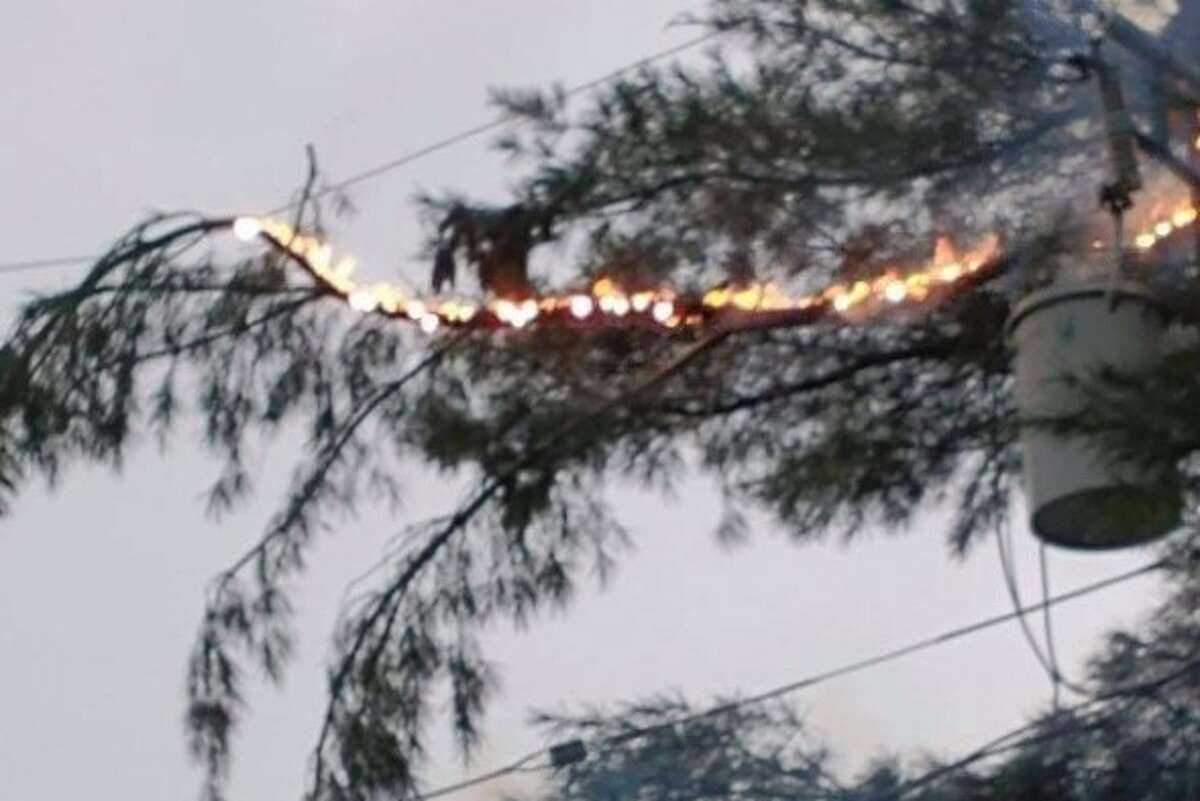 Evart resident Midge McLaughlan captured this photo of lighting in a tree during Tuesday's thunderstorms.
