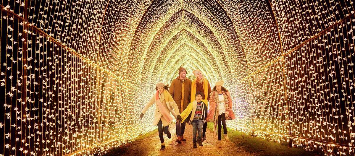 """Lightscape"" will light up the San Antonio Botanical Garden over the holidays."