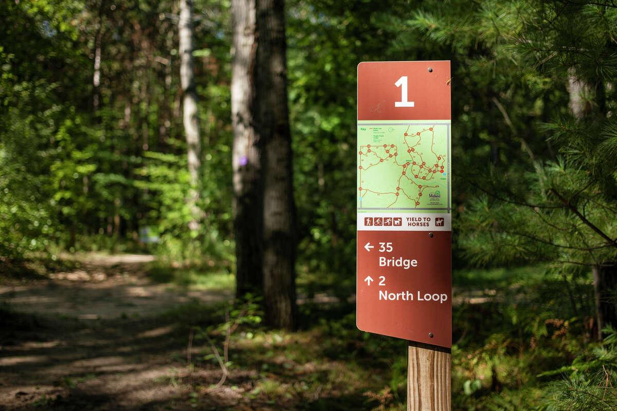A signpost is illuminated by sunlight Wednesday, Sept. 8, 2021 at Midland City Forest. (Katy Kildee/kkildee@mdn.net)
