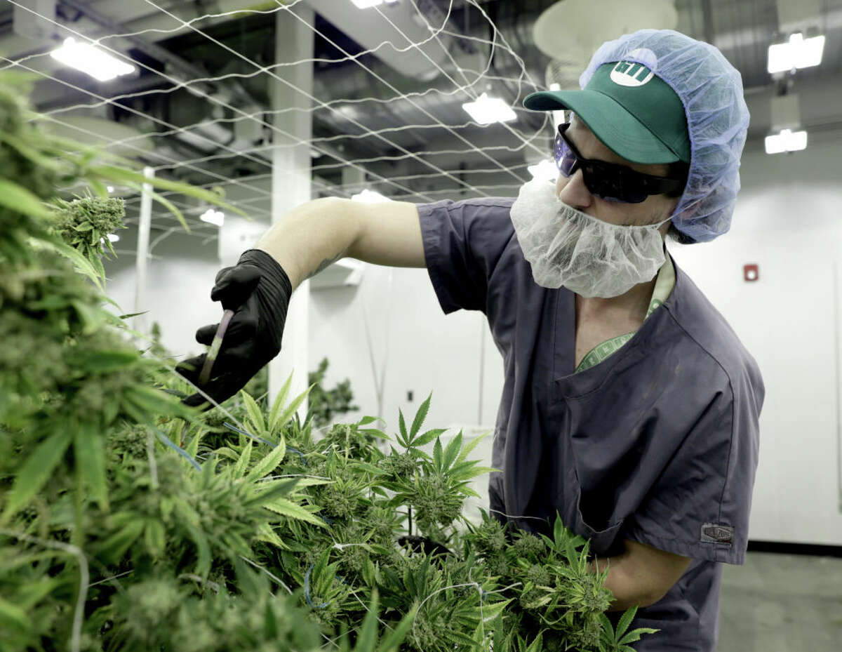 Green Thumb Industries broke ground on a new cannabis cultivation and production facility at a former prison in Warwick.