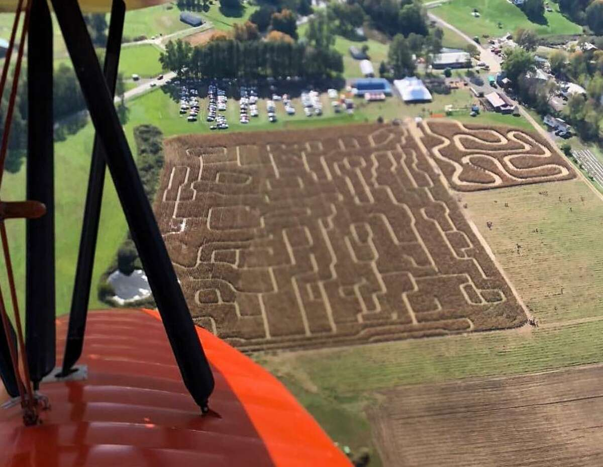 Kesicke Farm's 10-acre corn maze is the equivalent of 7.5 football fields, but far more challenging to get through.