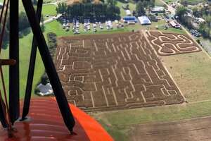 Kesicke Farm's 10-acre corn maze is one of the largest in the Hudson Valley.