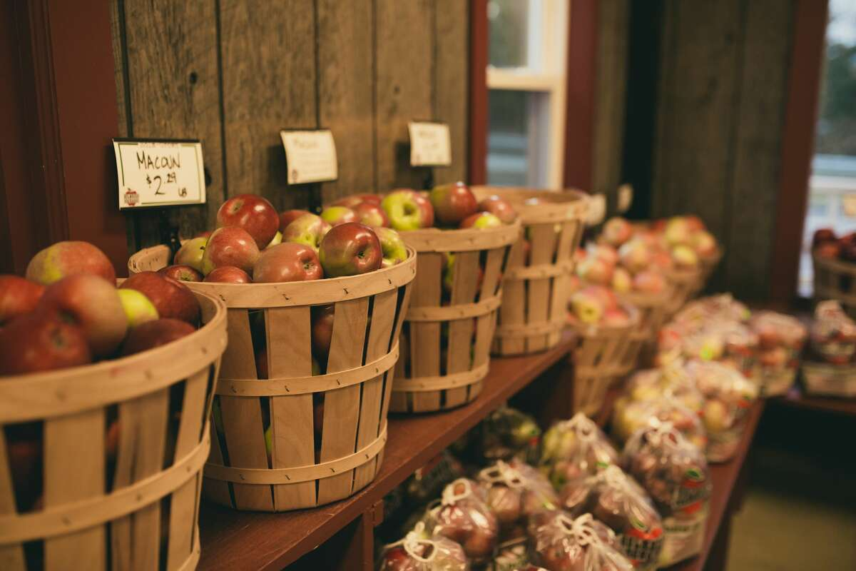 Apples from Holmberg Orchards in Gales Ferry, Conn.