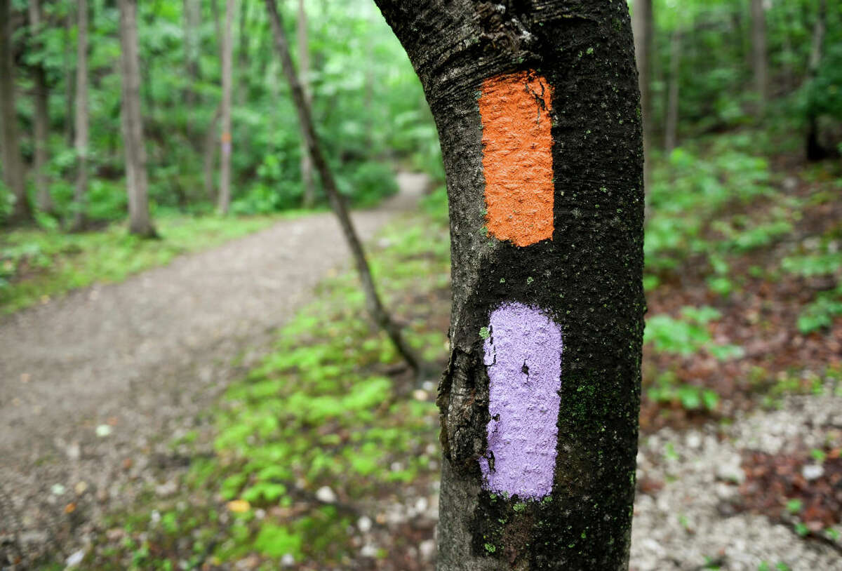 """Colored trail blazes carry different meanings in different regions. Orange is often used to designate a state forest hiking trail, and in 15 states, purple indicates """"no trespassing."""" New York has considered adopting the same, so-called purple paint law."""
