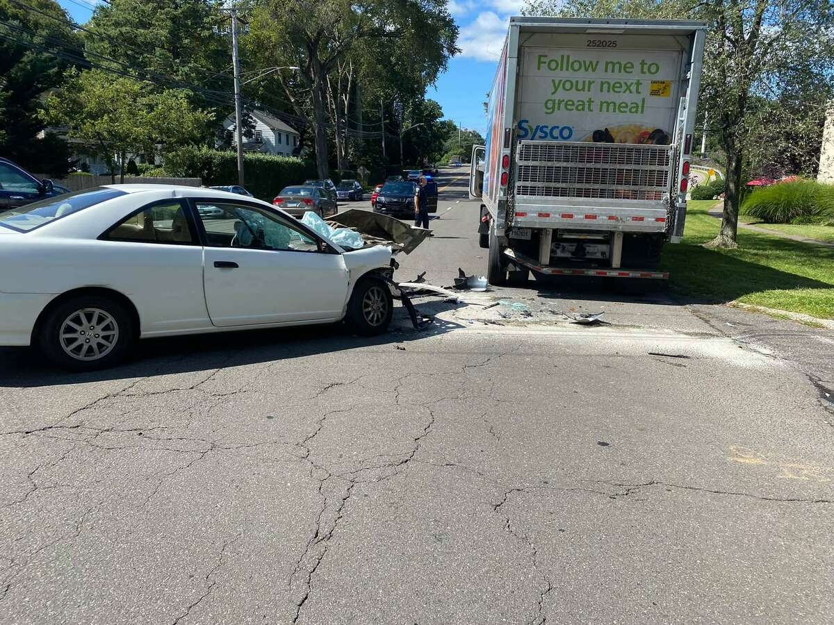 The car struck the rear box of a tractor trailer, causing possible internal injuries to two dogs sitting in the front seat.