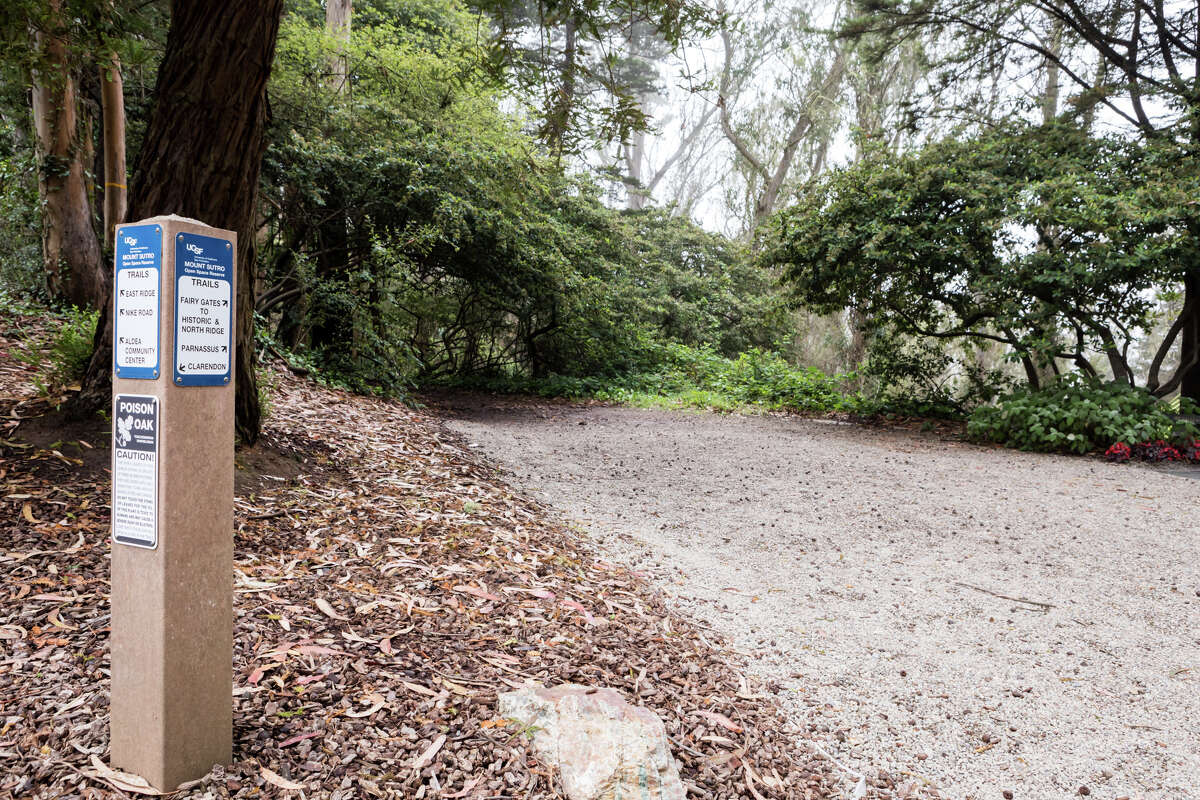 The Fairy Gates trailhead on Mount Sutro on Sept. 19, 2021. The hiking trails on Mount Sutro provide a natural respite in the middle of San Francisco.