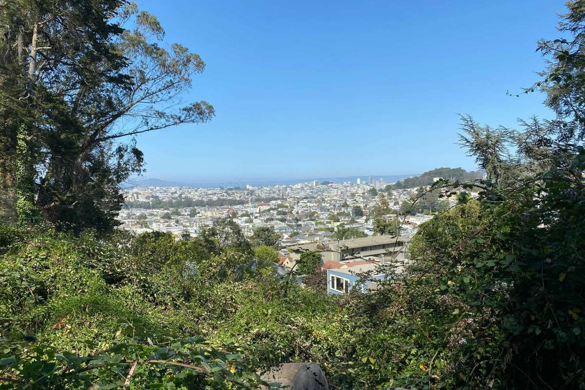 Sunny, clear days offer spectacular views from the top of Mount Sutro. The hiking trails on Mount Sutro provide a natural respite in the middle of San Francisco.