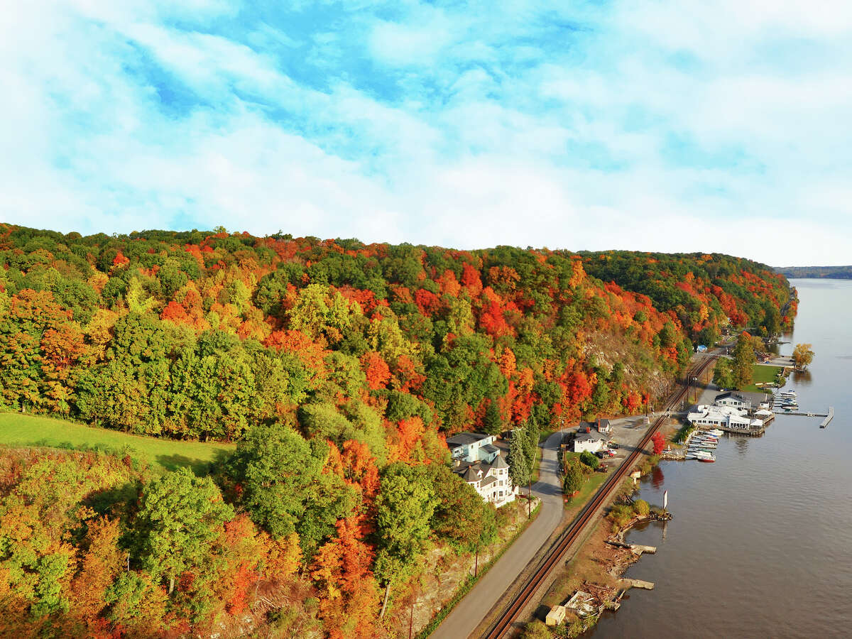 There is still a lot of mystery surrounding the science of changing leaves. But one thing is for sure: invasive pests will impact the colors we see during peak foliage.