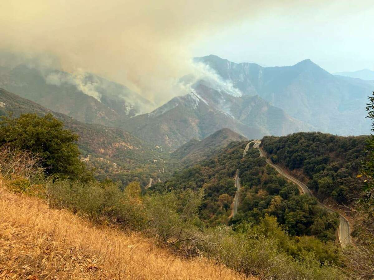 The KNP Complex fires in Sequoia National Park could pose a threat to Giant Forest of sequoias.
