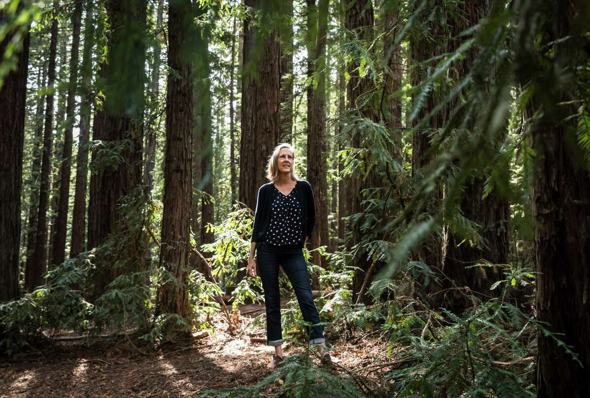"""Best-selling author Mary Roach in Redwood Regional Park in Oakland earlier this month. Her new book, """"Fuzz,"""" describes how humans try (and struggle) to manage wildlife around the world."""