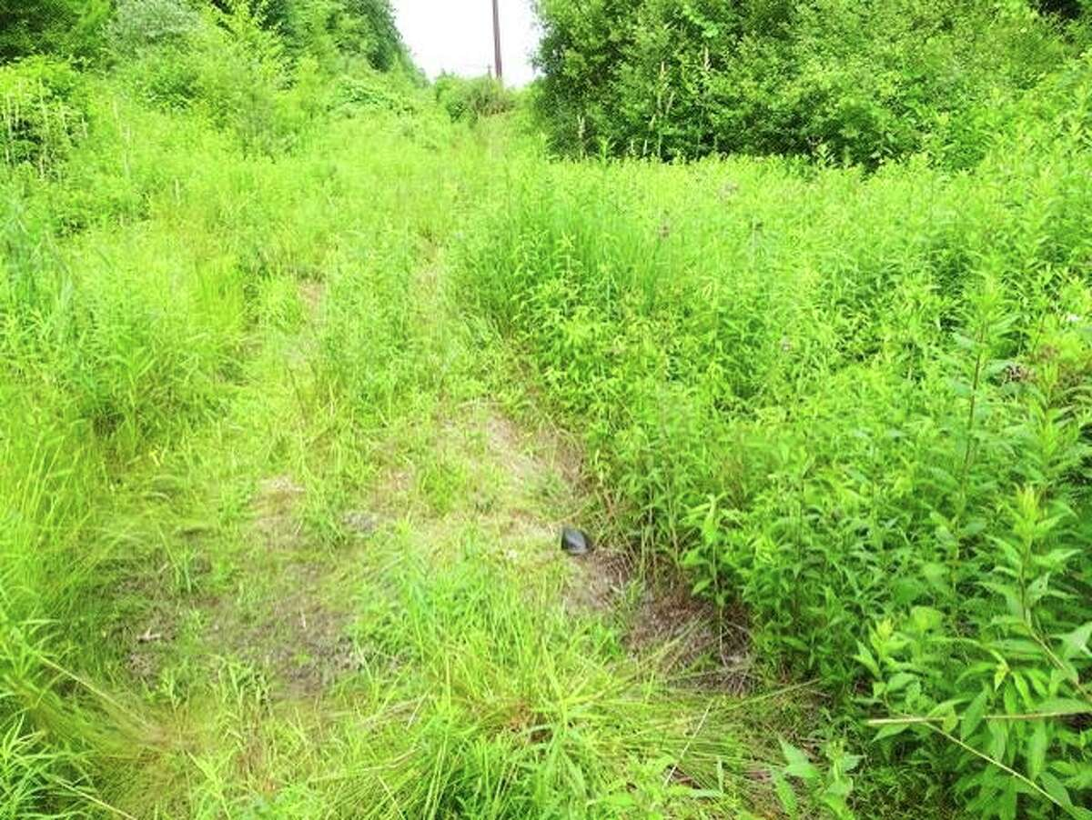 A view of a portion of the 78 acres in open space to be purchased by the city off South Main Street in Middletown