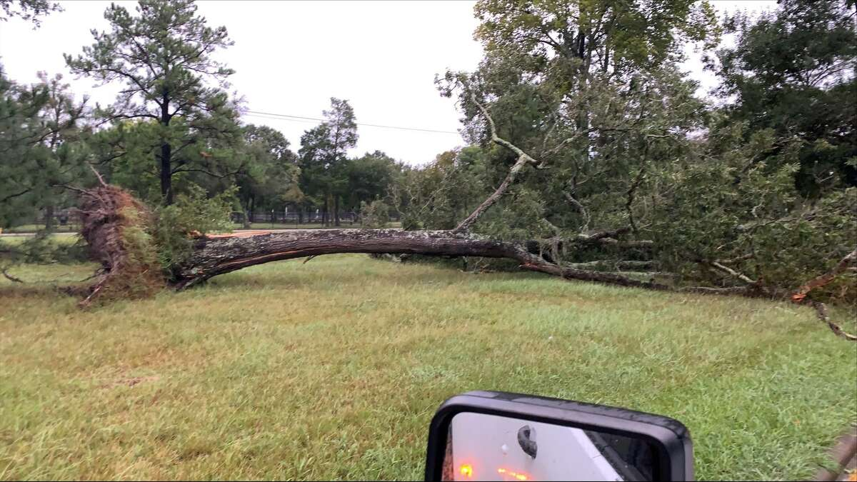 Damage from Hurricane Nicholas on Tuesday, Sept. 14, 2021 at Red Bluff across from Bay Area park.