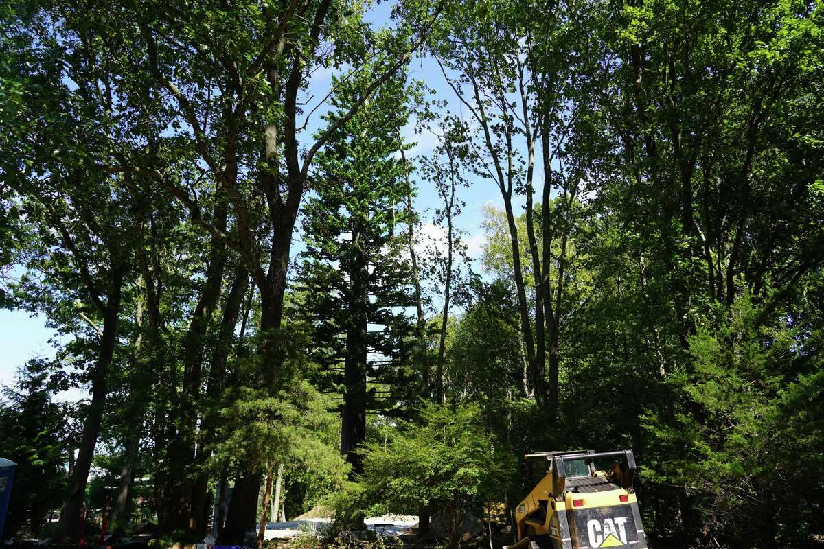 The 85-foot pine monopole cell tower has been erected on Keith Richey's private property at 183 Soundview Lane.