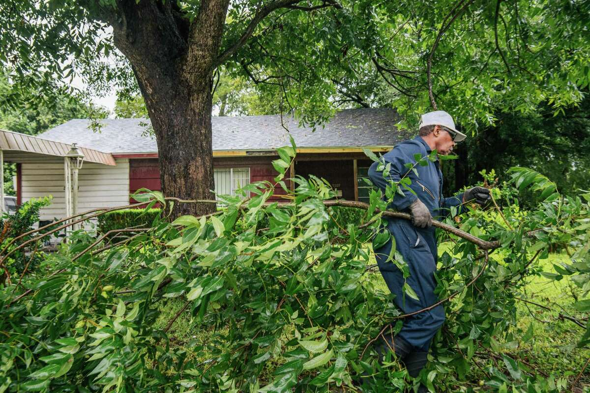 """Dallas Baines, 77, disposes of fallen tree branches after Tropical Storm Nicholas moved through the area on Sept. 14 in Houston, Texas. """"I've got no power, so I thought I might as well get out and get some cleaning done. There hasn't been much flooding in this area since Harvey,"""" said Baines when asked about the Tropical Storm Nicholas. Nicholas strengthened to a Category 1 hurricane as it made landfall late Monday evening, but is gradually weakening as it moves toward the northeast."""
