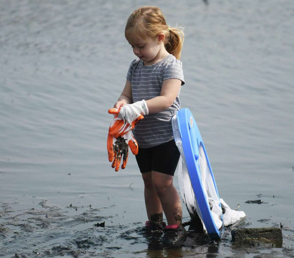 """Stamford's Ashira Faratci, 2, puts on gloves while picking up trash at Congregation Agudath Sholom's """"Reverse Tashlich"""" event at Gus Edson Park on Holly Pond in Stamford on Sunday."""