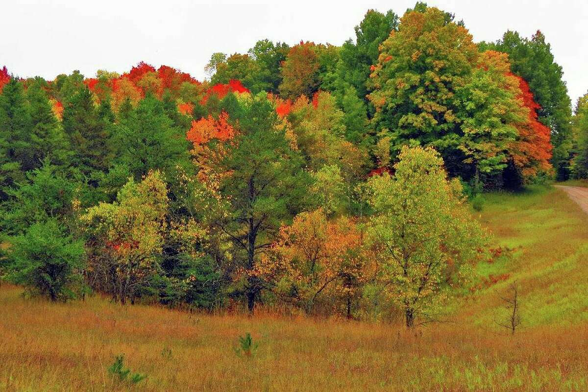 Improvements to the Huron-Manistee National Forests were completed as part of the Great American Outdoors act. (Courtesy Photo)