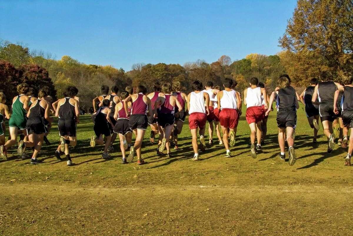 Nine Upper Thumb area teams took part in the Hatchet Invite Saturday (Metro Creative Graphics/File Photo)