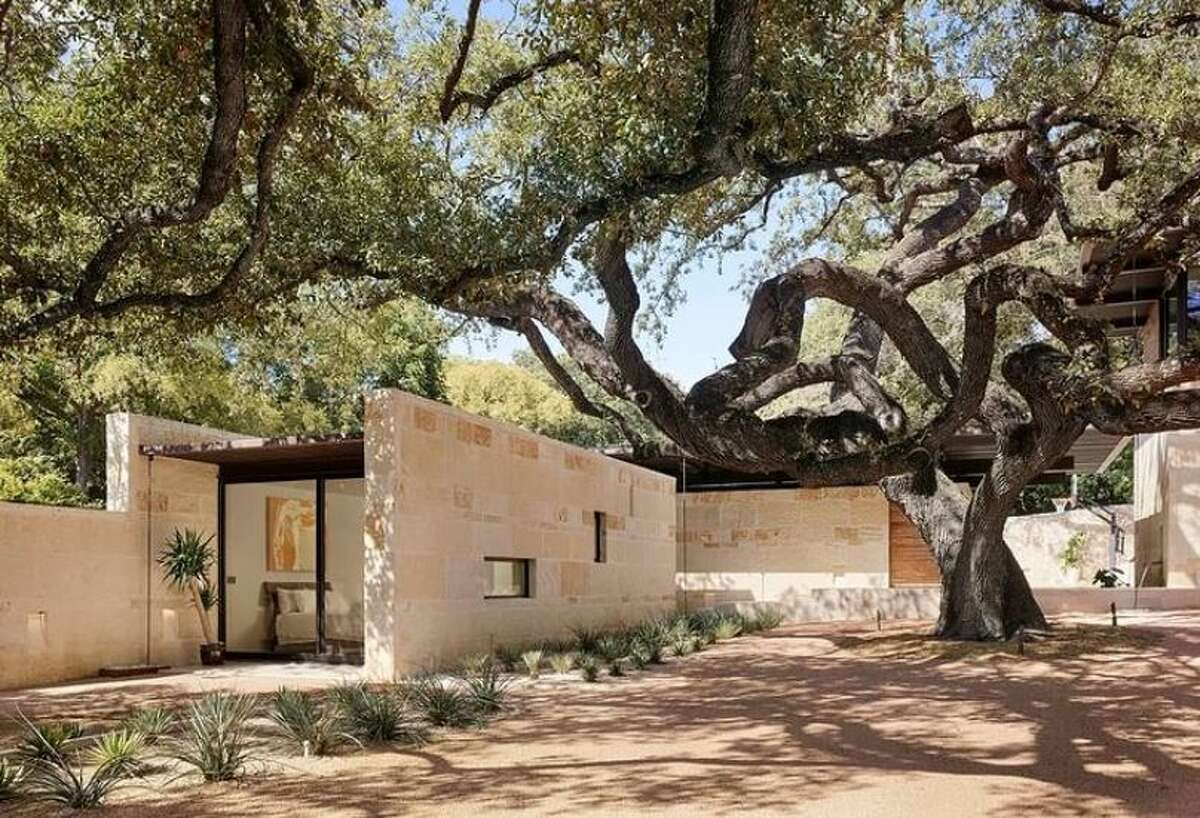 A space designed by the firm in Olmos Park opens onto a central courtyard anchored by this large oak tree.