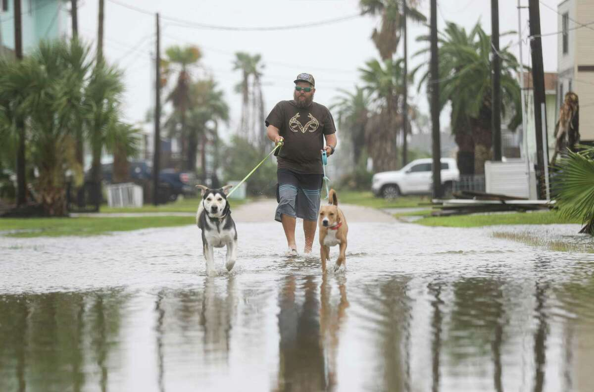 """Jon Wilson walks two dogs that belong to his friend Tuesday, Sept. 14, 2021, in Jamaica Beach. Hurricane Nicholas made landfall early that morning bringing wind and water to much of the upper-Texas coast. Wilson said he stopped by to walk the dogs for his """"old hunting and fishing buddy"""" who is suffering from cancer."""