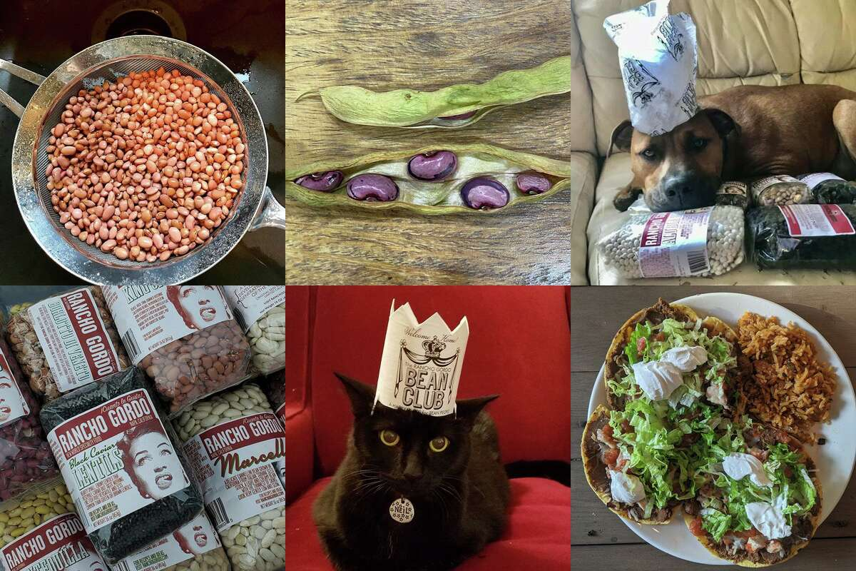 Photos of beans, dishes and pets shared on the Rancho Gordo bean club Facebook group.