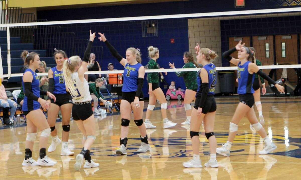 Members of the Morley Stanwood volleyball team celebrate winning a point during Wednesday's match against Hesperia.