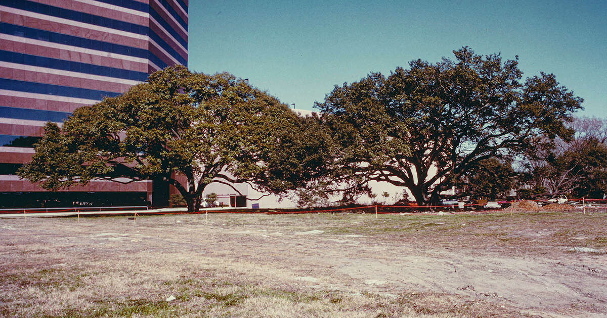 The centuries old oak trees at Becks Prime Augusta location are the main reason why Win Campbell and Mike Knapp purchased this property.
