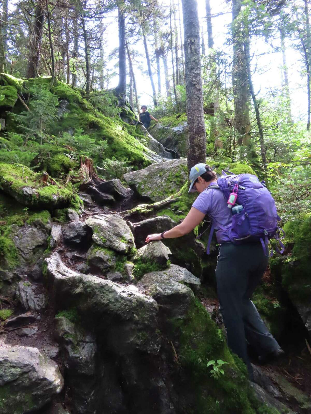 The trail up Mt. Ellen in Vermont climbs steeply to join the Long Path.