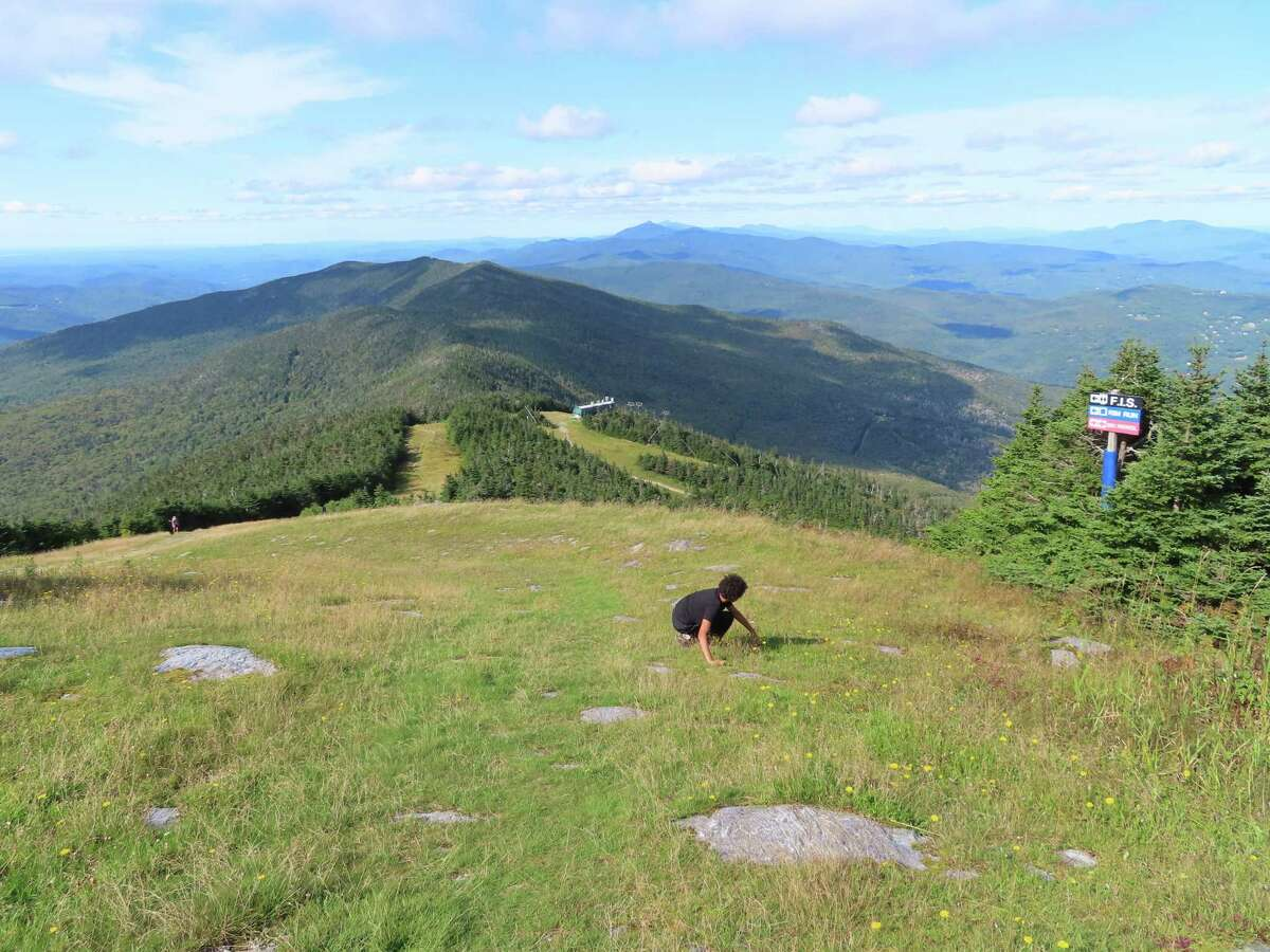 The summit of Mt. Ellen, host to ski slopes from Sugarbush Resort, offers expansive views over the Green Mountains.