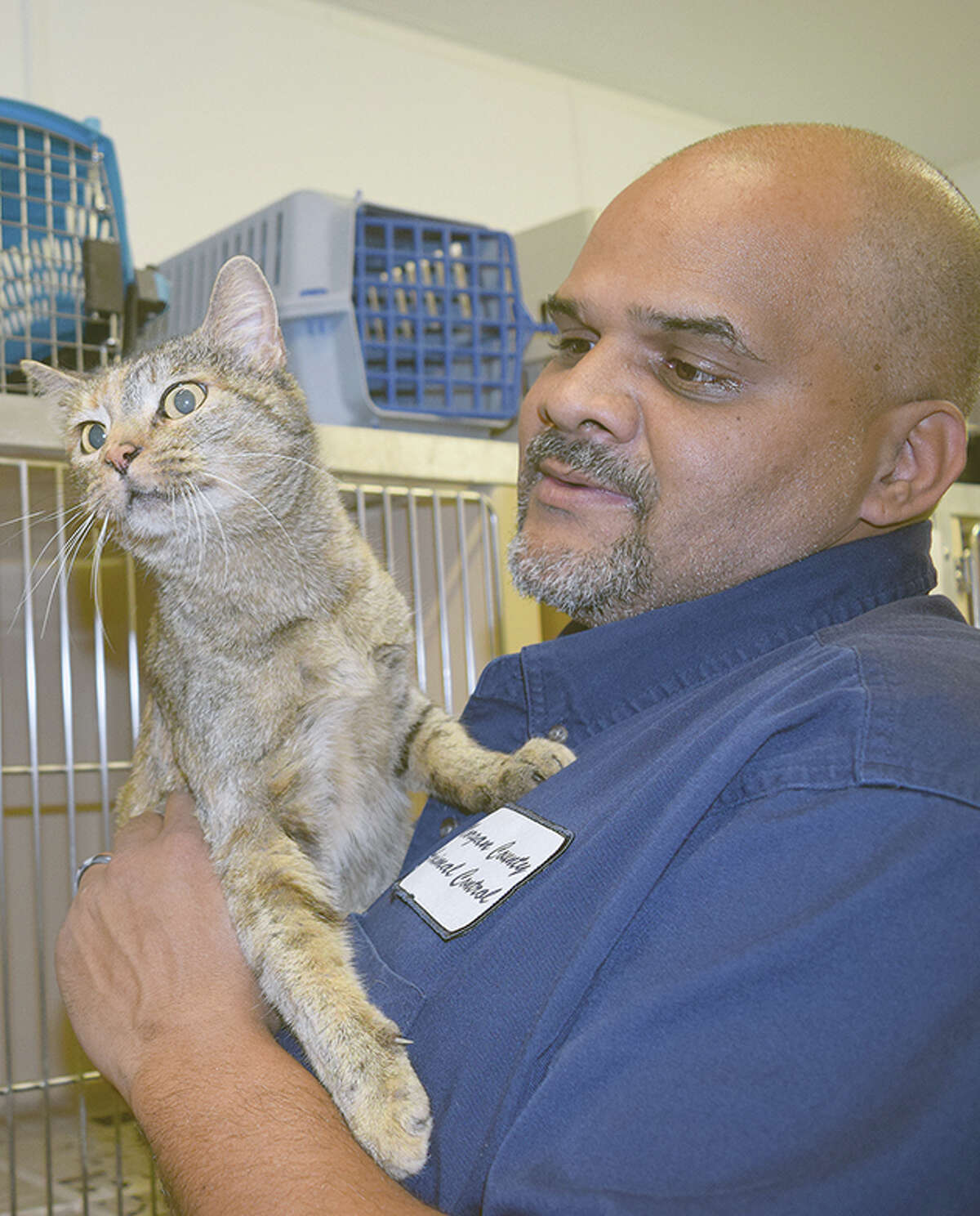Animal control officer L.C. Clinton visits with cats at Morgan County Animal Shelter.