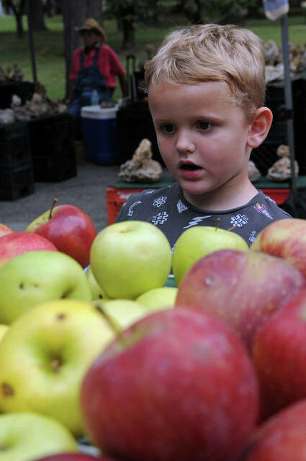 Abram Ballard of Wood River gazes at a large selection of fresh apples during the 2019 Apple Festival at Pere Marquette Lodge. This year's fest is set for Sunday at the lodge from 11 a.m. to 3 p.m.