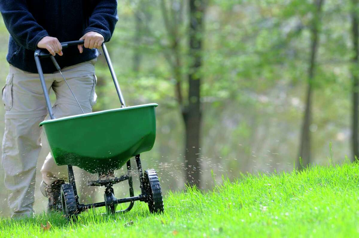 Now through mid-October is the best time to fertilize. If you only fertilize only once a year, this is the time to do it, along with a few other little chores.