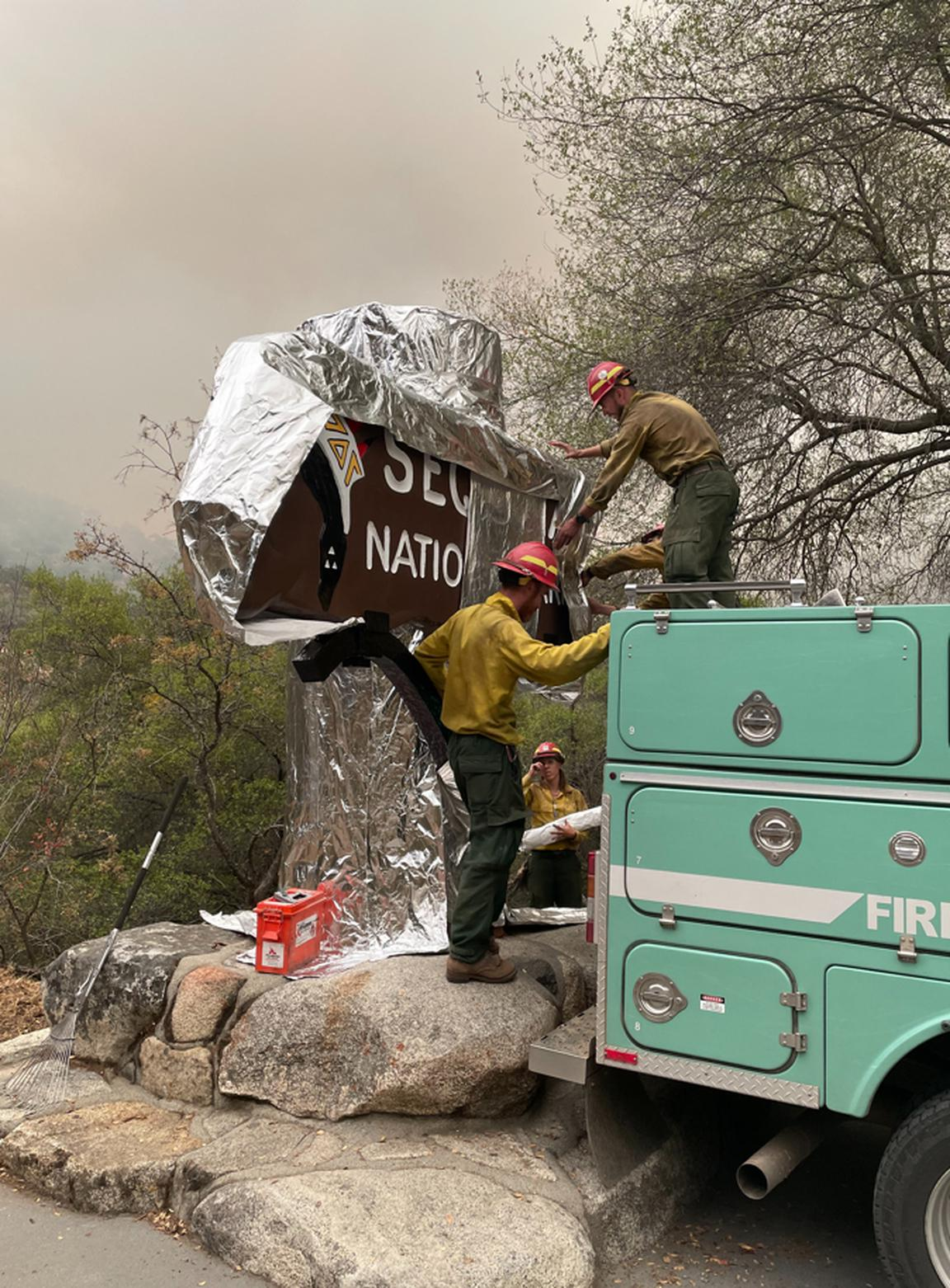 Here's when wildfire could reach the Giant Forest and the foil-wrapped General Sherman tree