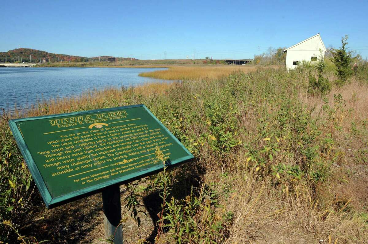 In this file photo, a view of the New Haven Land Trust Quinnipiac Meadows nature preserve.