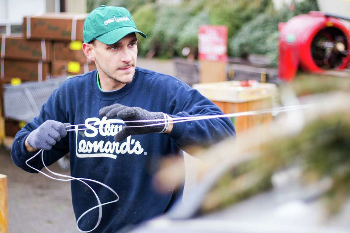 An undated photo of a Stew Leonard's worker in the Christmas tree yard. With many employers struggling to hire workers during the COVID-19 pandemic, Stew Leonard's aims to bring on as many as 1,000 seasonal staff for the holiday run through year end.