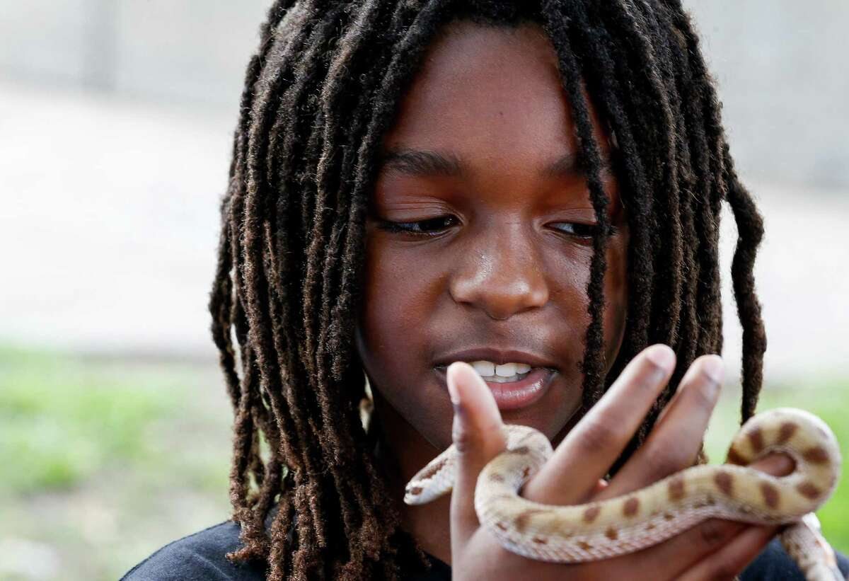 Micah Nubin, 10, looks at a snake closely while holding it during the Love Our Parks Fest at Our Park on Saturday, Sept. 18, 2021, in Third Ward.