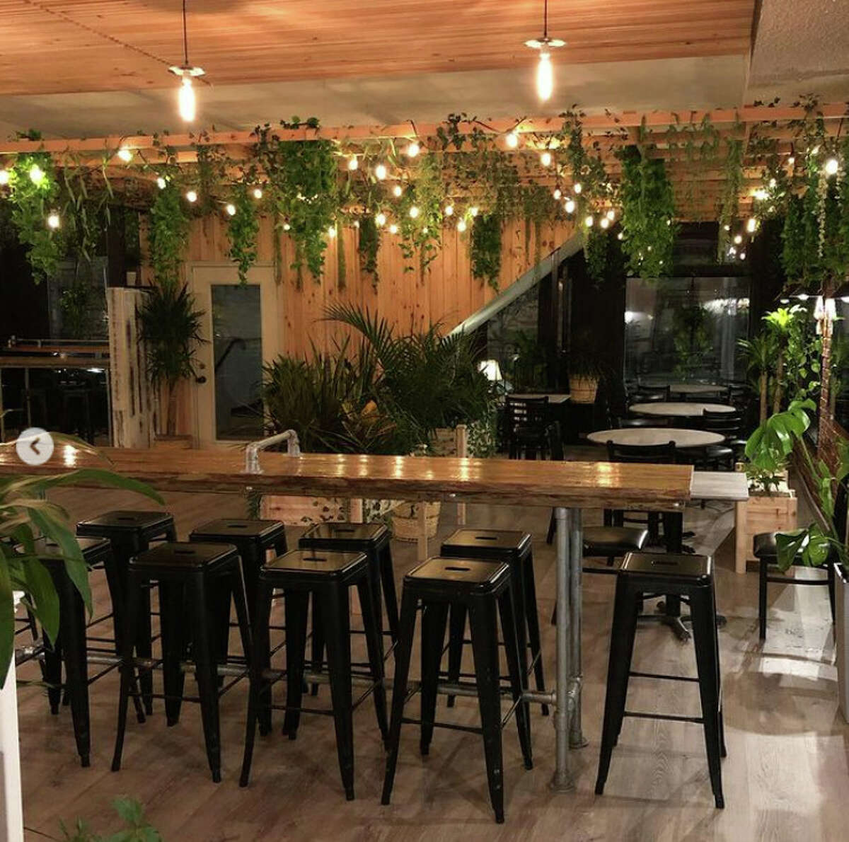 LAX Restaurant & Lounge, open since fall 2013 at 205 Lark St., is being redeveloped as Bar Vegan, which will feature plant-based decor and food as well as all-vegan beer, wine, cider and spirits. A soft opening, with select small-plate options and drinks, will be held Sept. 24 and 25, with a grand opening in October. Read more.