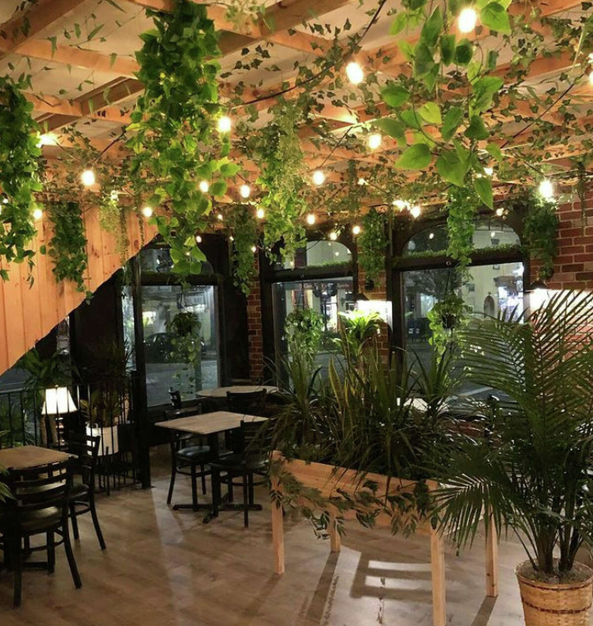 The new bar vegan, a rebranding of the former LAX Restaurant & Bar space at the corner of Lark and State streets in Albany.