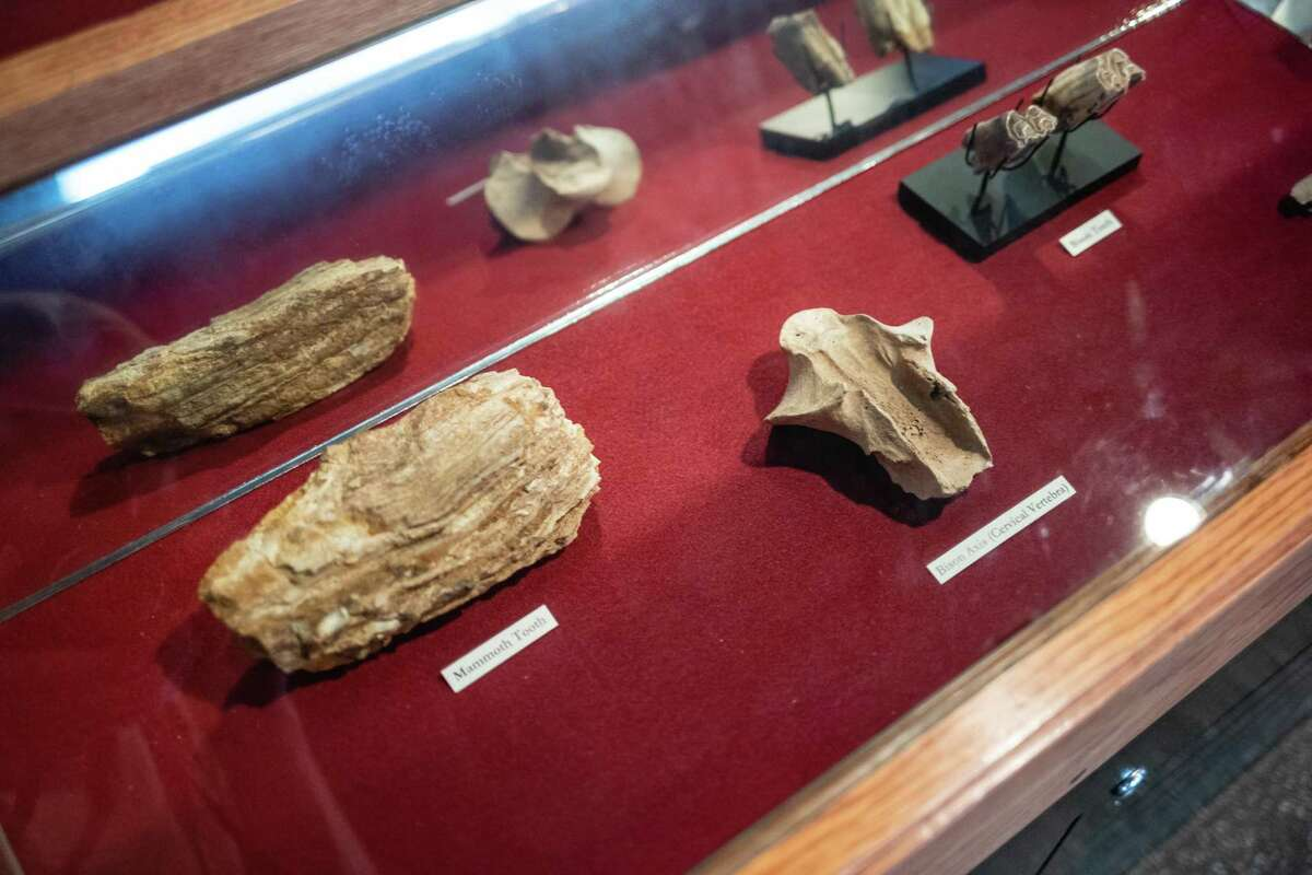 Relics are displayed Wednesday at Texas State's Meadows Center for Water and the Environment in San Marcos.