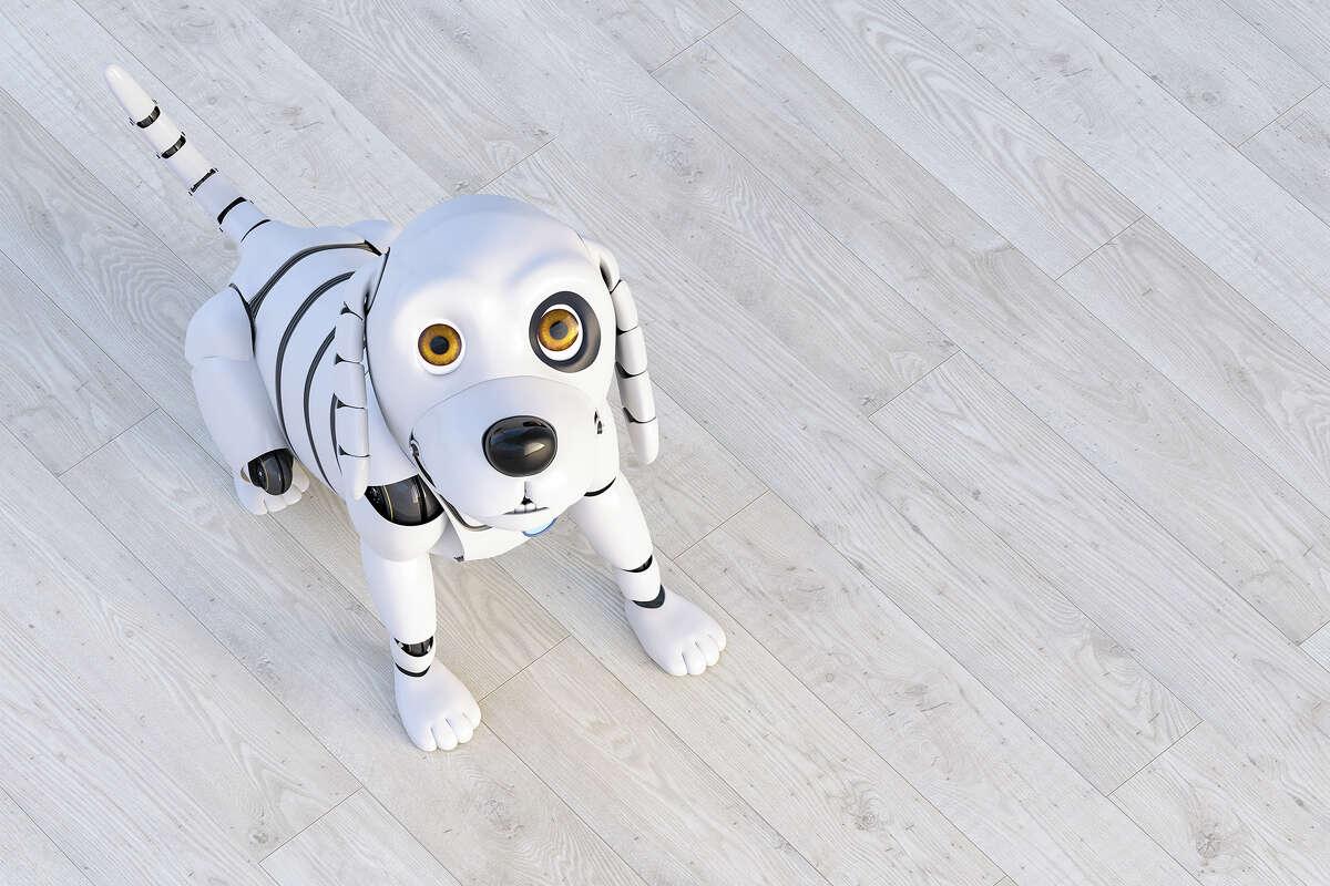 Enabot Interactive Pet Robot