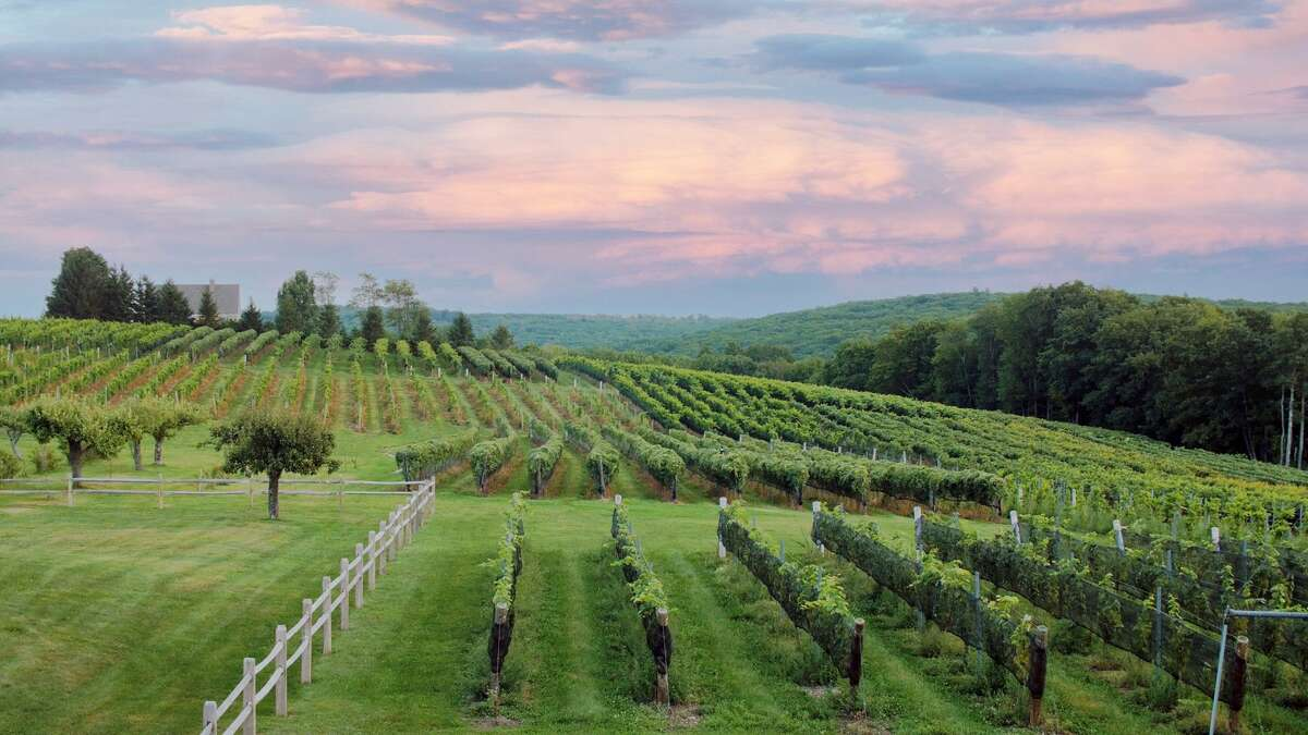 The Northwest Connecticut Arts Council and Sunset Meadow Vineyard are partnering to host the first in-person Arts Night Out networking event, the first in more than a year. The vineyard is in Goshen.