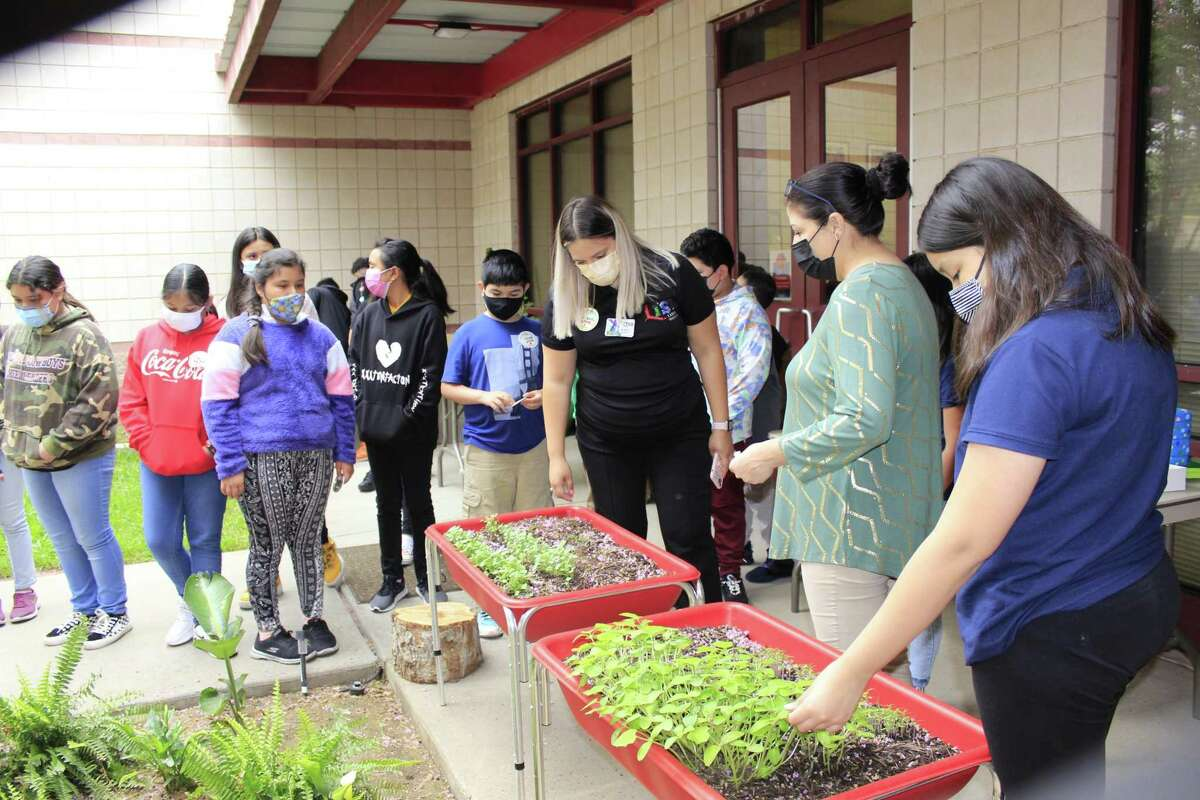 Students at Milton Elementary School participated in the Learn and Grow on Local Food Produce Event at their campus. Students were given samples of local produce and planted some vegetable crops of their own.