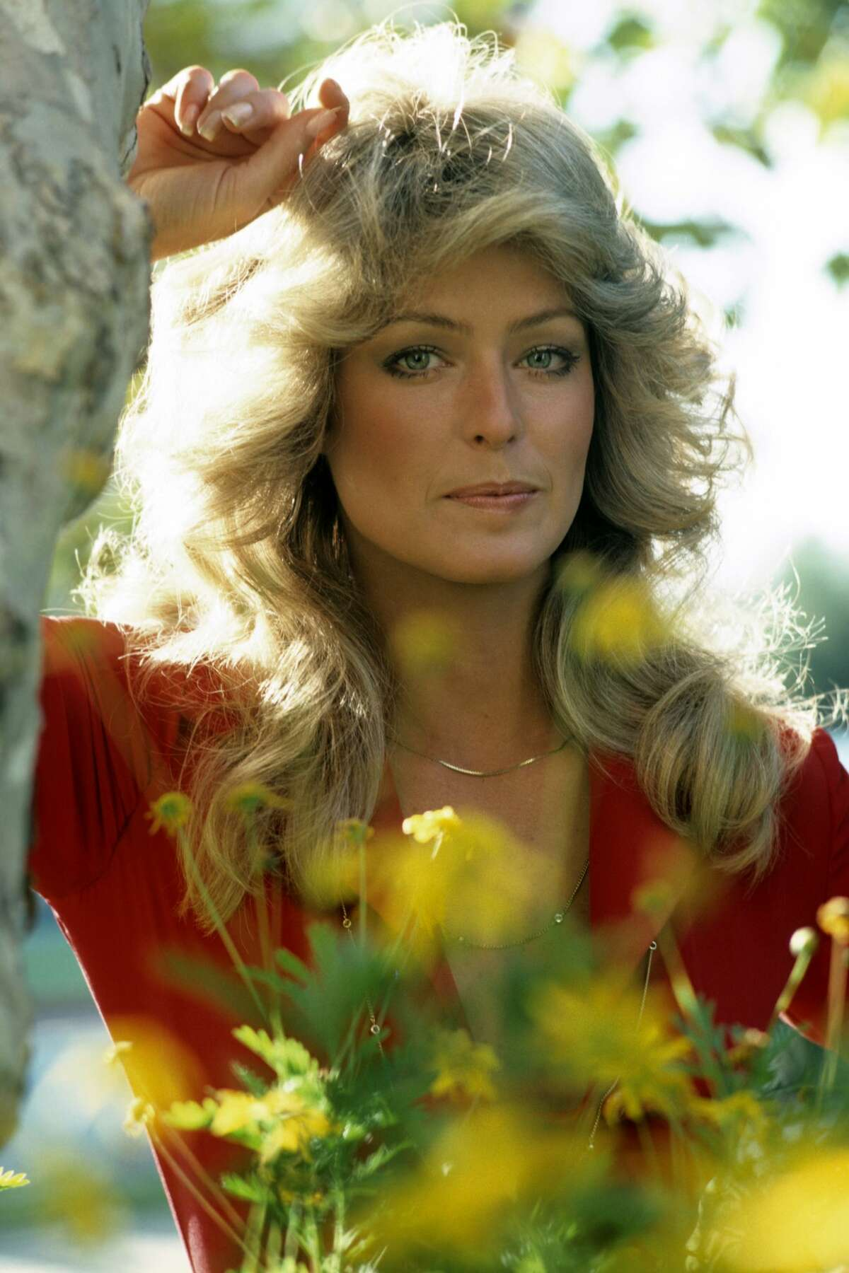 UNITED STATES - JUNE 15: CHARLIE'S ANGELS - AD Gallery - 6/15/76 Farrah Fawcett (Photo by ABC Photo Archives/Disney General Entertainment Content via Getty Images)