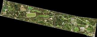 Aerial image of Golden Gate Park where trees cover 54% of the area.