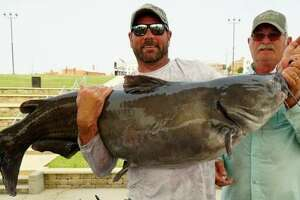 The first place Alton Catfish Classic team of Justin Neece of Odessa, Missouri, and John Jamison of Wellsville, Kansas show off their 73.99-pound fish, part of a three-fish catch totalling 161.38 pounds. A new video of this year's tournament is now online.