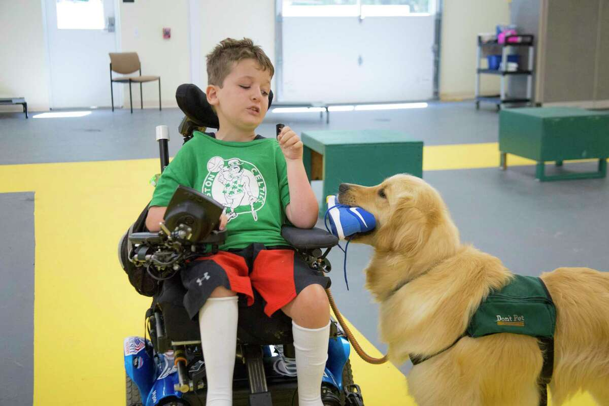 A service dog being trained at Educated Canines Assisting with Disabilities shows one way it can help the person it's partnered with.