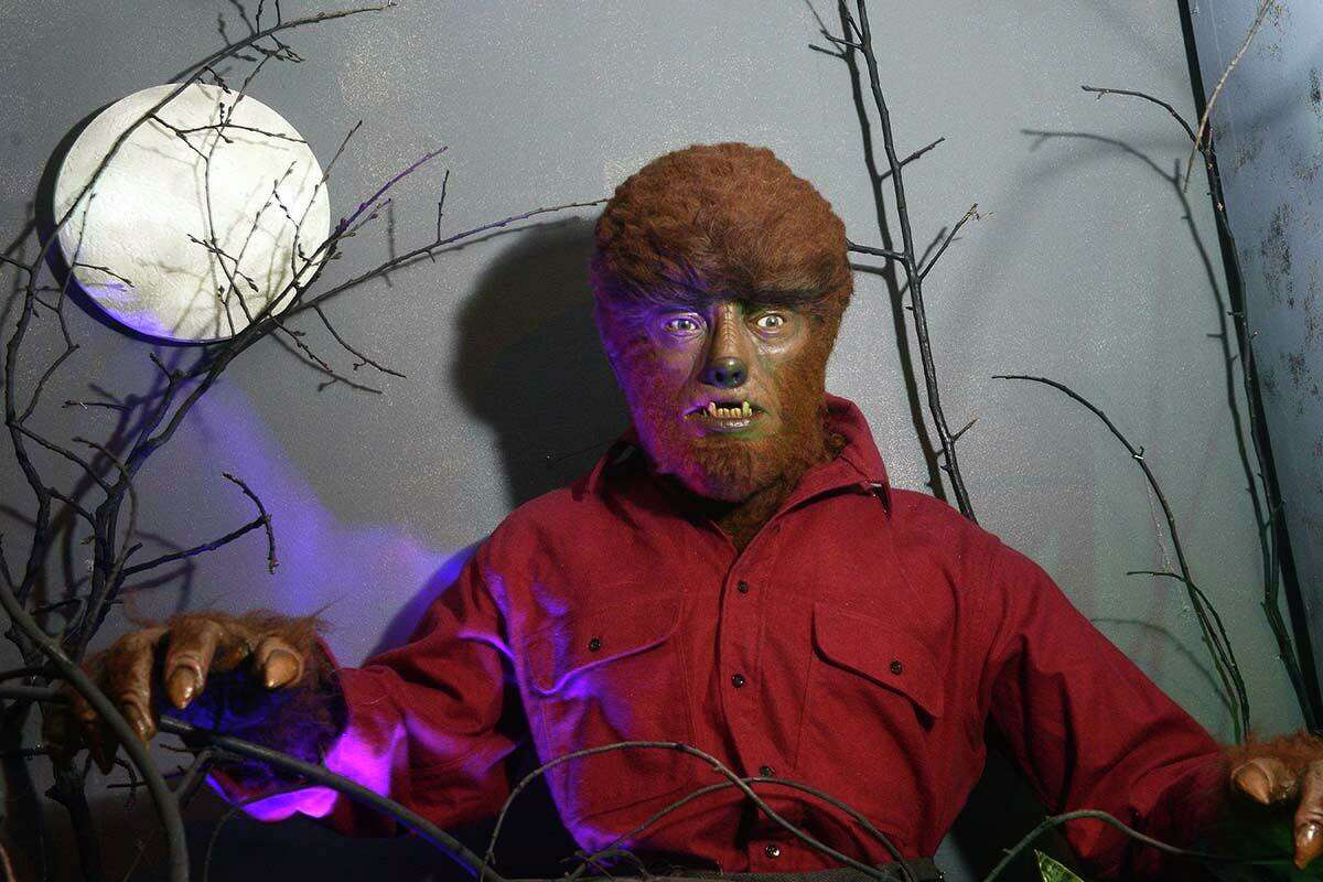 The character of Wolf Man by Lon Chaney Jr. from